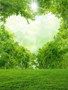 Bokeh Spot Sunny Green Tree Love Heart Vinyl Photography Backdrops do Dia Dos Namorados Foto Booth fundos para os adereços românticos do Estúdio de casamento