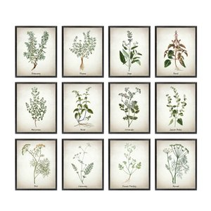 Canvas Art Painting Vintage Illustrations Posters and Prints Culinary s Botanical Kitchen Wall Art Picture Decor