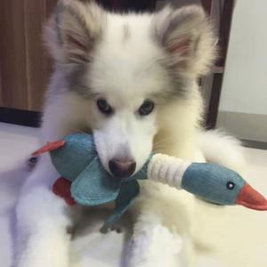 Pet serapilheira Toy serapilheira Pato Ganso Selvagem brinquedos para cão Dite Vocal selvagem Duck Squeaker Cat Squeaky Plush Som Toy