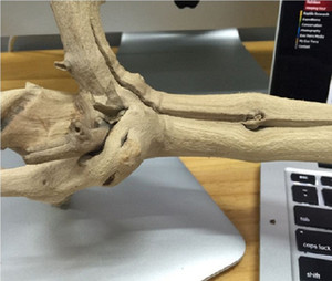 Driftwood natural para la rana del árbol de reptiles decoración de la caja del Gecko lagarto camaleón reptil de la serpiente paludario Vivarium Decoración