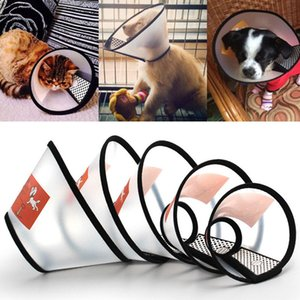 Collar isabelino 1pcs Salud de las mascotas para perros gatos mascotas recuperación collares anti-Bite herida Recuperación de software translúcido XS ~ XL