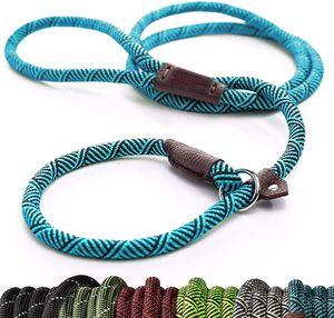 Durable Schlupf Seil Hundeleine Halsband 2 in 1 Einstellbare Schleifenkragen Comfortable Kleine Meidum Large Pet Supplies Geschirr-Leine