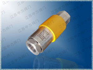 Jiangsu Zhongli Valve Co., Ltd. Supply CNG-025-09T Compressed Natural Gas 316SS High Pressure Pull-out Valve