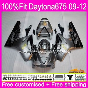 Injection For Triumph Daytona 675 09 10 11 12 Bodywork 44HM.7 Silvery Black Daytona-675 Daytona675 Daytona 675 2009 2010 2011 2012 Fairing