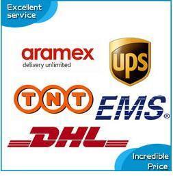 DHL FEDEX ARAMEX TNT UPS Schnell Lieferung Zahlung Link