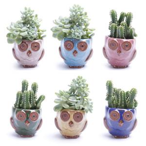 Owl Ice Cracked Pot Empty suculent Plant Cactus Flower Pots Cartoon Colorful Plant for Desktop Garden Free DHL