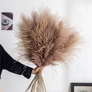 10 шт. PAMPAS Trash Decor Phragmites Reed Flowers Home Рождественский Украшение Высушенные Цветок Букет Натуральные растения