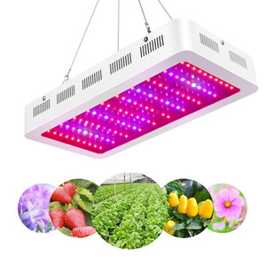 1000W 1200W 2000W LED Grow Light, Новейший полный спектр света для растений с ультрафиолетовым и инфракрасным излучением, регулируемая веревка, лампа для выращивания, для комнатных растений