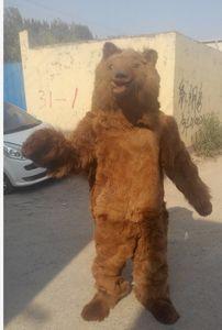 Costume de mascotte d'ours bruns de haute qualité costume de caractère costume adulte taille livraison gratuite