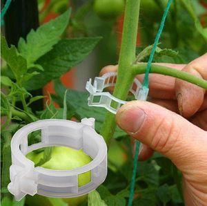 23mm reutilizable de plástico soporte de plantas Clips Pinzas para plantas colgantes Vine jardín del invernadero Tomates de los vehículos clips