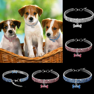 Pet Rhinestone chien animal Collier chiot Collier de mode Bling Colliers Sparkly Stretchy Blanc Rose Bleu Chocker