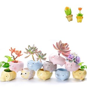 Meaty Botany Flowerpot Mini Creative Succulent Pots Animal Character Cartoon Ceramic Basin Ornament Venta directa de fábrica 3 33fy p1