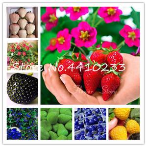 Bonsai 500 Pcs / Paquet japonais Gaint Fraise douce de fruits intérieur extérieur Bonsai graines Fraisier jardin multi-couleurs pour choisir
