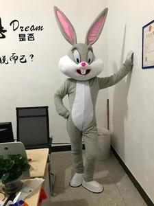 satılık 2017 Satış gibi Sıcak Profesyonel Paskalya Maskot Kostüm ve Hatalar Yetişkin maskotu
