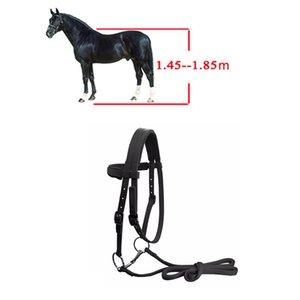 Regolabile Equitazione Attrezzature Halter Horse Bridle con Bit e Rein cintura per Horse Equestrian Accessori morbida addensare Grande