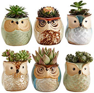 Owl Pot Ceramic Flowing Glaze Base Succulent Plant Pot Cactus Flower Pot Container Planter Bonsai Pots with A Hole Perfect