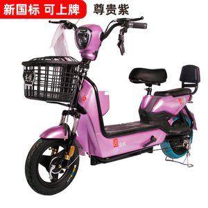 Fabrik-Großhandel Golden Eagle Elektro-Auto-Adult National Standard mit Big-Lizenz lizenziert Zwei-Rad-Elektro-Fahrrad-Batterie-Auto