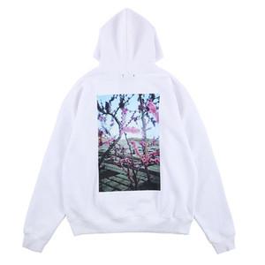 FOG FEAR OF GOD Essentials-19AW Mens Entwerferhoodies-Blumen-Vogel Kalifornien Foto Pullover Hemd lose mit Kapuze Druck Sweatshirt