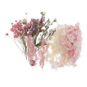 الطبيعية الحقيقية المجففة المضغوط الأوراق الزهور للفن الحرف بطاقات الصابون شمعة