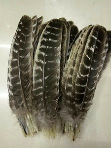 Großhandel schöne Edel wilden Federn Truthahn Schwanz 10-12inch / 25-30cm Crafts DIY