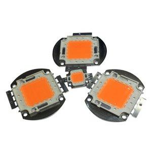 High Power 10W 20W 30W 50W 100W Lâmpada LED SMD Lâmpadas Chip IR Full Spectrum cresce a luz