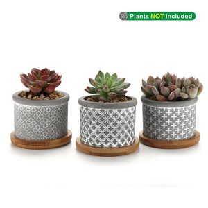 2.25 Inç Çimento Etli Saksı Bambu Tepsi ile Gri Pot 3 Küçük Beton Kaktüs Bitki Pot Set