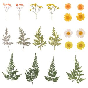 2 Sheets Total 20pcs DIY Pressed Flowers Sticker Dried Leaf Flowers Plants Patches for Crafts Making (Orange and Yellow)