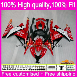 Injection For KAWASAKI ZX3R EX 300 ZX 3R 300R 13 14 15 16 17 Nice Red White 25HM.4 EX300 R ZX-3R ZX300R 2013 2014 2015 2016 2017 OEM Fairing