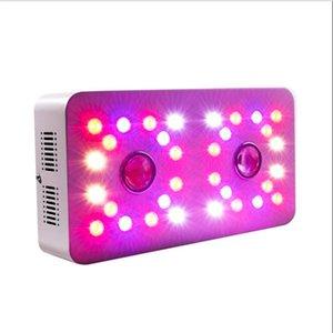 2pcs COB + 32pcs 더블 칩 300W COB LED 빛 성장 전체 스펙트럼 식물 성장 램프 신선한 허브 야채 녹색 꽃