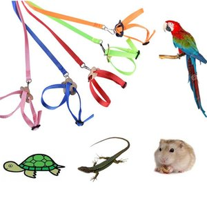 Colorful Parrot Bird Collar Harness Adjustable Hamster Turtle Lizard Traction Rope Reins 8-shaped Collar Pet Strap Leash