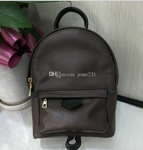 Designer de alta qualidade Pu Couro Mini Bag Mulheres Crianças Escola Bags Backpack moda famosa Palm Springs Lady Bag Travel Bag