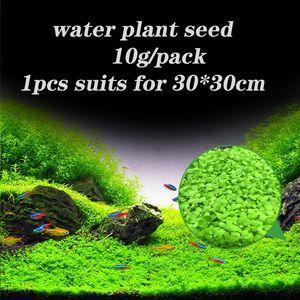 Akvaryum Çim Tohumları Akvaryum Halı Fabrikası Su Bitki Tohumları Aquatic Su Çim Bitki Dekorasyon İçin Diy Ev Bahçe Kolay Büyüyen