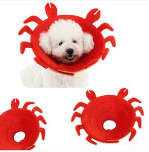 매상!!! 무료 배송 Wholesales 크랩 복구 Elizabethan Collar 애완 동물 Anti-Biting Ring Collars 보호 상처