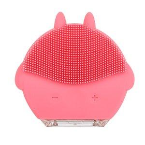 Mini Elektrikli yüz temizleme fırçası USB silikon Kaldır siyah nokta yüz HIFU masaj vibratör ggünee cepillo