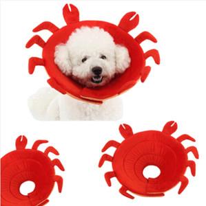 무료 배송 Wholesales 2019 크랩 복구 Elizabethan Collar 애완 동물 Anti-Biting Ring Collars 보호 상처
