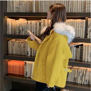 2019 autunno e inverno nuovo stile piumino versione femminile coreana del cappotto netta corta in cotone rosso grande collo di pelliccia di pelo corto