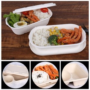 Dégradable Pulp Disposable Hamburger Fast Food Box salade portable à emporter Conteneurs écologique dégradable Box jetable déjeuner BH1761 TQQ