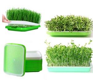 Double-couche en plastique hydroponique panier Plateaux Nursery Plateau fleurs légumes Semis Pépinière Pot Germination Graine grandir Box