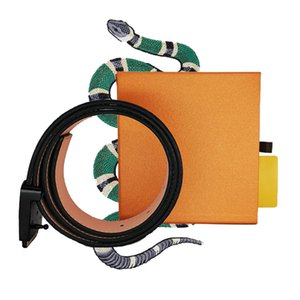 para mujer para hombre d cinturones esigner mejores Cinturones clásicos originales marrón Cinturones para mujer para hombre de alta calidad a cuadros para mujer regalos de flores de cuero genuino