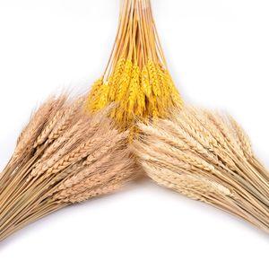 Dekorativer getrockneter Kornblumenstrauß der künstlichen Blume der natürlichen Anlage des Weiß getrockneten Weizendekors Hochzeits-Dekoration trocken