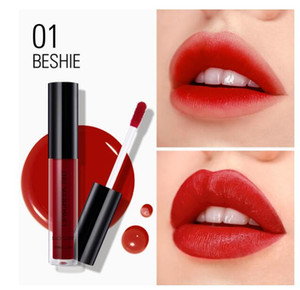 SACE LADY 4 colors Waterproof Multifunction Lip Gloss cheek tint Long Lasting Matte Lipstick Liquid Blusher Cosmetic Makeup