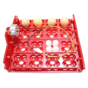 16 ovos de galinha 64 ovos de codorniz Parrot Ovos Egg Incubator Tray Tensão aplicada é 110v / 220v / 12v Incubadora Acessórios