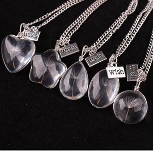 Botella de vidrio collar semilla de diente de león natural en vidrio Make A Wish Grano de vidrio Orb collar de cadena larga plateado plata diente de león natural necklac