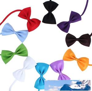 Yeni 19 renk Pet kravat Köpek kravat yaka çiçeği aksesuarları dekorasyon Malzemeleri Saf renk ilmek kravat