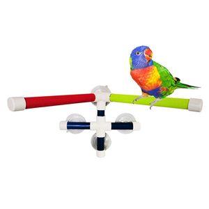 Parrot Bagno Doccia Standing Platform Rack Parrot Standing doccia Perch Parrocchetto uccello bagno giocattolo Cremagliera del banco giocattolo Grinding