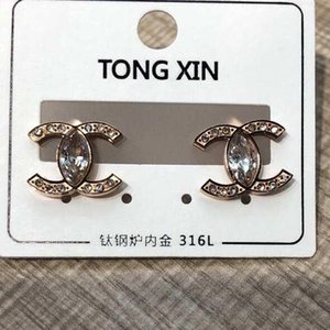 Classic Style Rose Gold Big Size Water drill Earrings Titanium Steel Leopard Print Ring pendant Earrings Earrings For Women Gifts