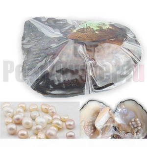 Big Wild Freshwater Oyster Monster 10 years 20-30pcs Natural Color Shape Pearls Mussel Farm Supply Vacuum Packing 5PCS ZB002