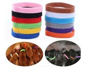Collar Identificación del perrito de identificación ID collares de banda para la Cría de gatito cachorro de perro de animal doméstico del gato de terciopelo Práctica 12 colores al por mayor