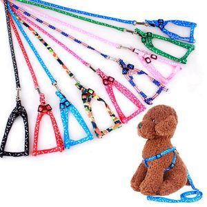 120cm mascotas Impreso correo del arnés collares de perro ajustable de la cuerda perrito Correas Cat Pet Supplies para perros pequeños 11 colores HHA1493