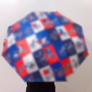 Classic Carriage Printed Umbrellas Lattice Designer Parasol Women Men Brand Parasol Outdoor Uv Protection Sunshade Parasol Birthday Gifts
